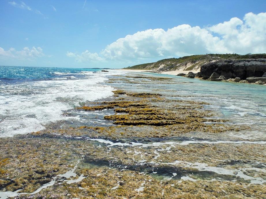 世界で最も海が美しいバハマ3泊4日の旅(3日目)グレートエグズーマ