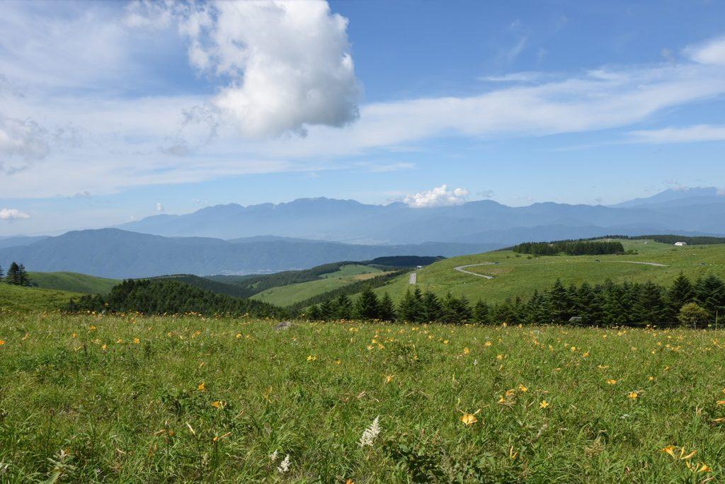 花、富士山、アルプス、八ヶ岳、魅力が盛り沢山の贅沢な高原!霧ケ峰日帰りトレッキング